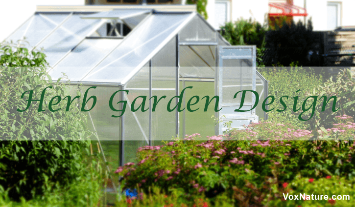 you know the joys of growing something yourself  5 Types of Herb Garden Designs