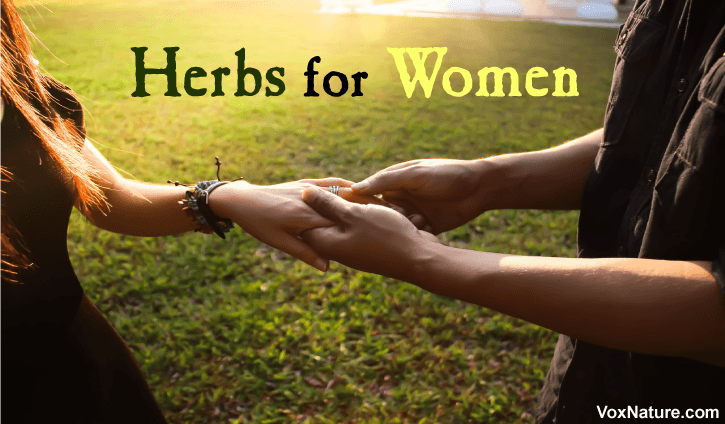 s no secret that women tend to naturally have a lower libido and sex drive than men Top  Top 5 Herbs for Women's Sexual Health