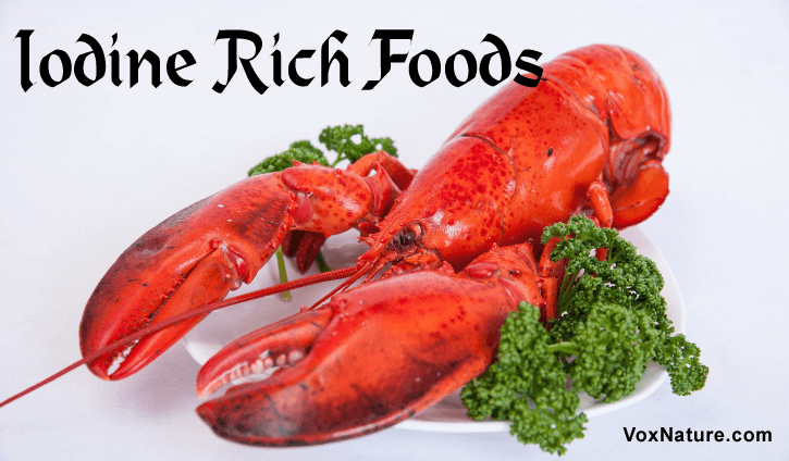 Iodine is a trace mineral that is naturally found in and needed by the body Top  Top 10 Iodine Rich Foods