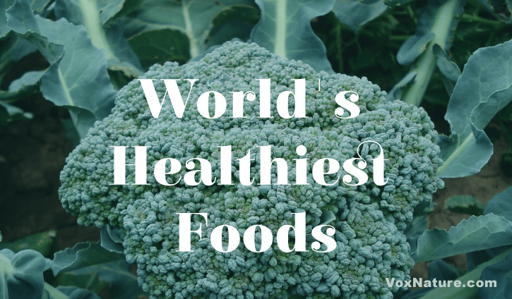 Everyone knows that eating healthy is important to help you feel good and live longer  19 of the World's Healthiest Foods