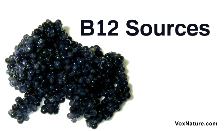 is a crucial vitamin that helps give your body the fuel it needs to get through the day T Top 10 Rich Food Sources of Vitamin B12