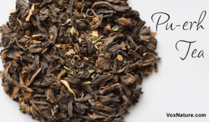 Why Pu-erh Tea is Good for Your Health