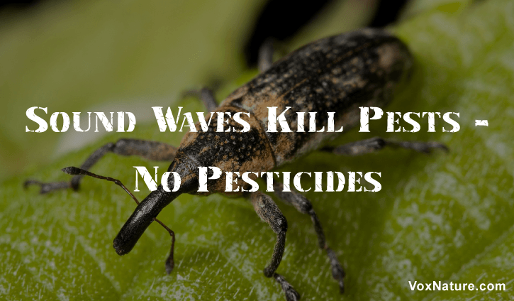 Pests have always threatened the life of crops New New! Sound Waves for Killing Pests