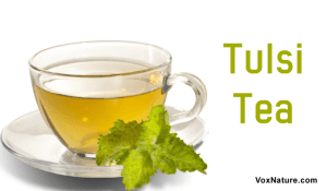 8 Incredible Health Benefits of Tulsi Tea