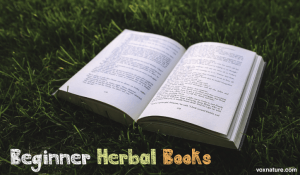 5 Herbal Books for Aspiring Herbalists