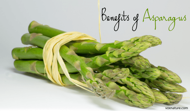 Asparagus does more than just make your potty smell funny Health Benefits of Asparagus (Asparagus officinalis)