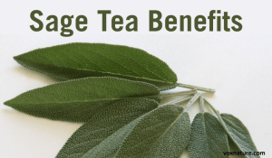 How Sage Tea Can Benefit Your Health