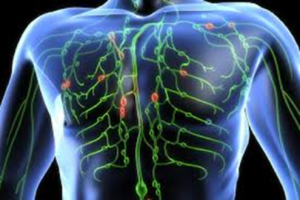 Signs Your Lymphatic System Is Clogged (and what to do about it)