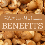 Health Benefits of Shiitake Mushroom (Lentinula edodes)