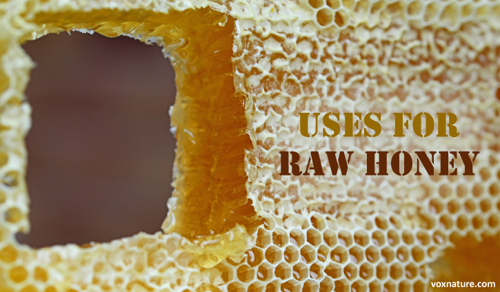 Many people already know that honey is delicious 7 Fantastic Uses for Raw Honey (Health  Beauty)