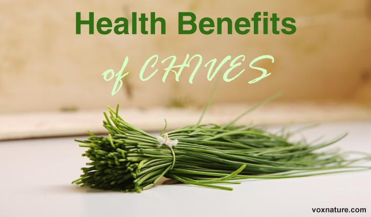 You may think that chives are only good for making a plate look pretty Health Benefits of Chives (Allium schoenoprasum)