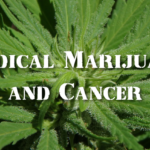 Scientific Evidence Suggests That Marijuana Can Cure These 8 Types of Cancers
