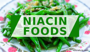 Foods with High Levels of Vitamin B3 (Niacin)