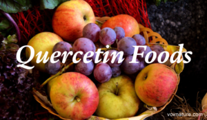 Foods With High Levels of Quercetin
