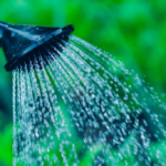 6 Smart Tips to Conserve Water Outdoors