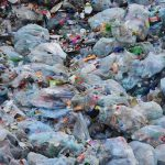 7 Reasons Why Plastic Bags Should Be Banned