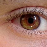 Foods That Can Supposedly Change Your Eye Color