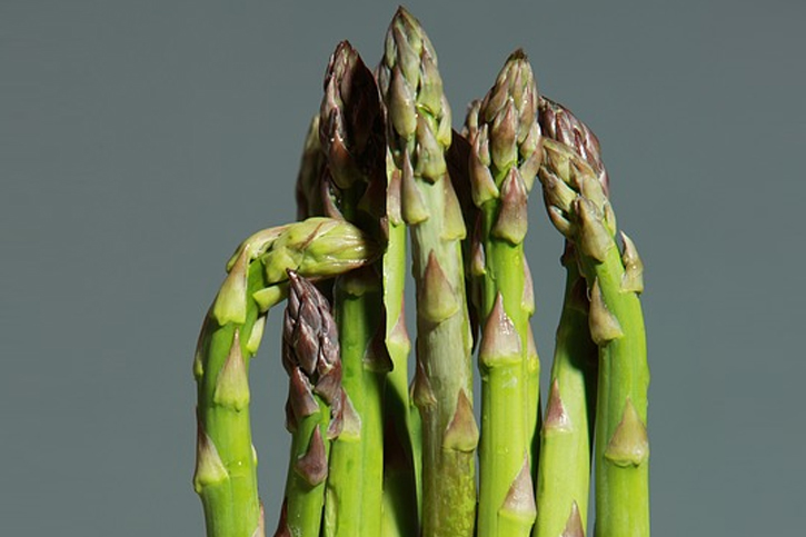 Shatavari is a member of the larger group of the asparagus family Shatavari Tea Benefits for Your Health