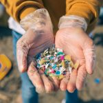 Everyday Foods that Contain Microplastics